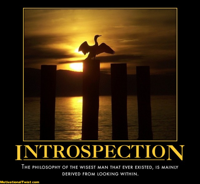 Introspection-within-wise-look-motivational-1290264930